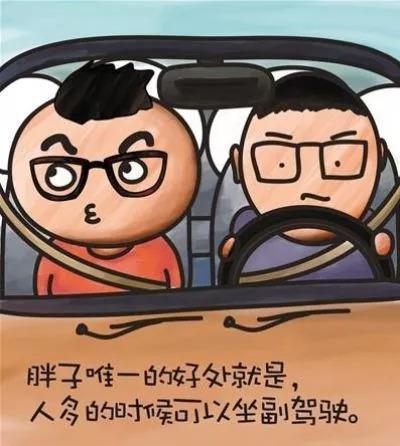 搞笑图片:胖子只能坐副驾驶图片