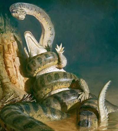 泰坦巨蟒vs史前巨鳄,两者竞争关系从远古延续到了现在