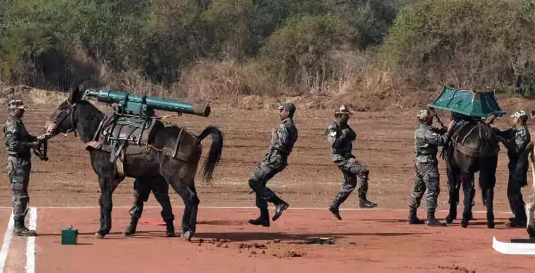 解放军高机动迫击炮上高原 印军火炮还在用骡子
