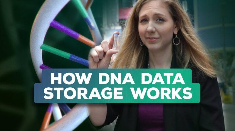 比特币私钥存储新方式——DNA存储-E安全