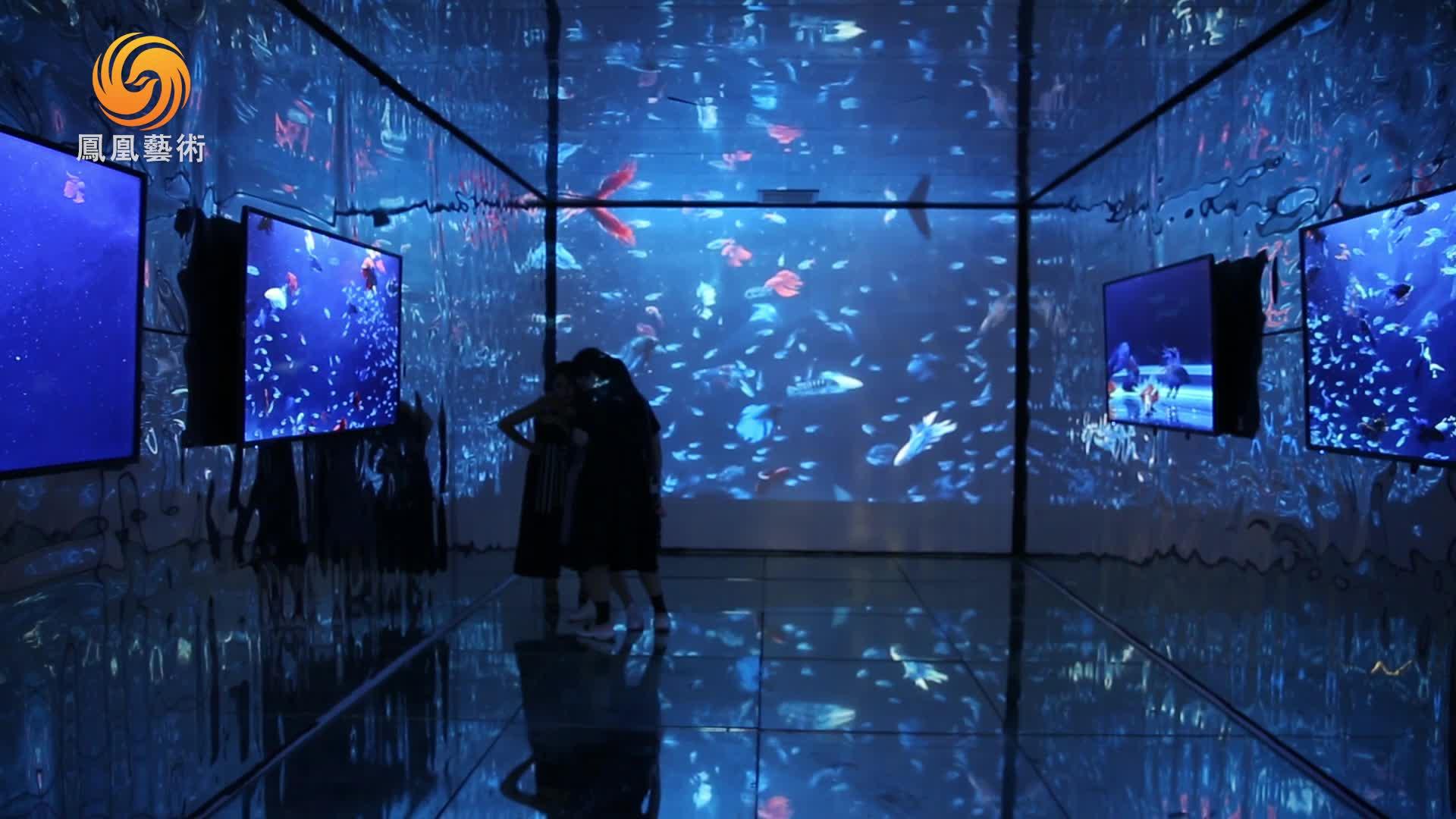 """手机作为艺术语言 美术馆""""白盒子""""的灵光能否再现?"""