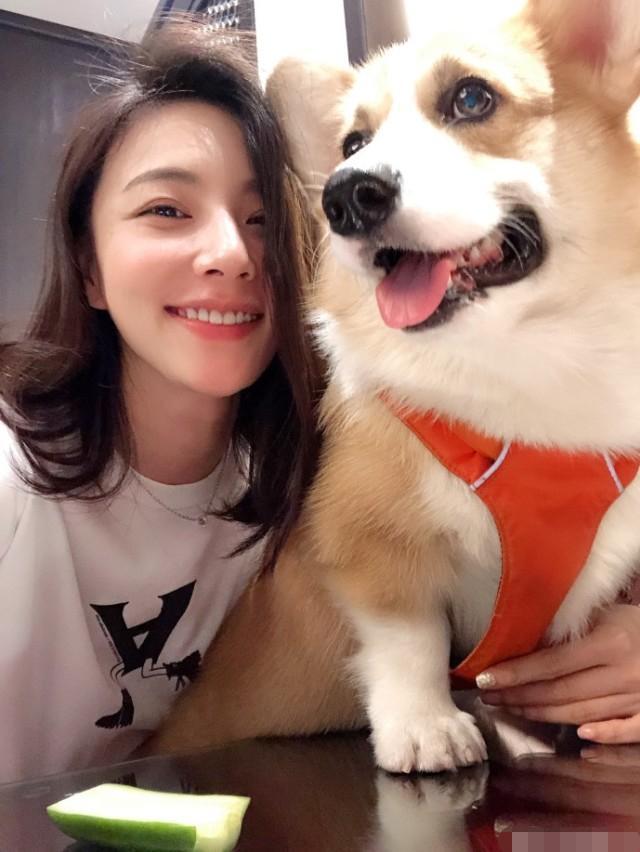 王思聪新女友身份确定,是女演员陈雅婷,因狗与王思聪结缘