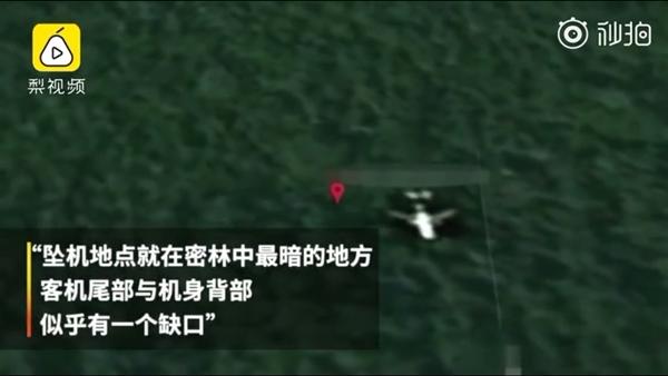专家称在Google地图发现马航MH370残骸:柬埔寨密林中