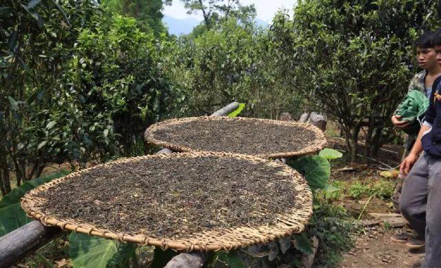 普洱茶包装采用纯手工制作的棉纸,手工包装,手工棉纸透气性强,利于长
