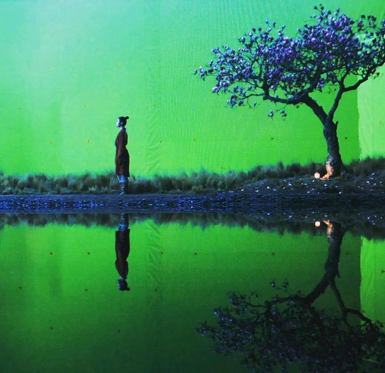 《花木兰》或融入老版歌舞元素 网友想看刘亦菲跳舞