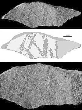 南非洞穴出土迄今最古老画作 距今约7.3万年