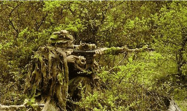 百步穿杨还是无影无踪 狙击手的威力根源到底是什么?