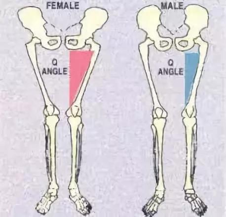 三,哪些身体结构关系与你的膝盖内扣直接有关?