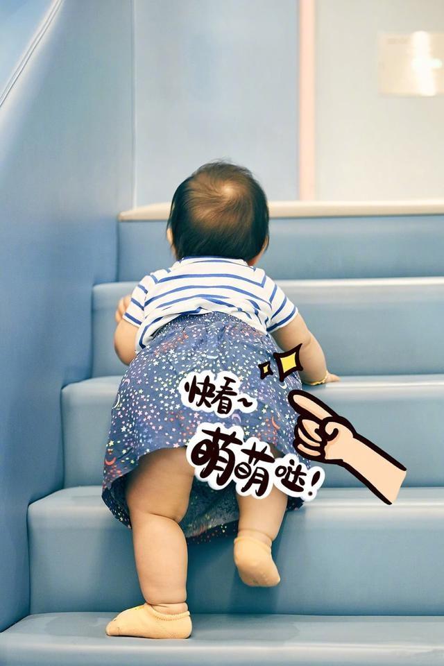 朱丹晒女儿萌照,快1岁撅着屁股会爬楼梯了!