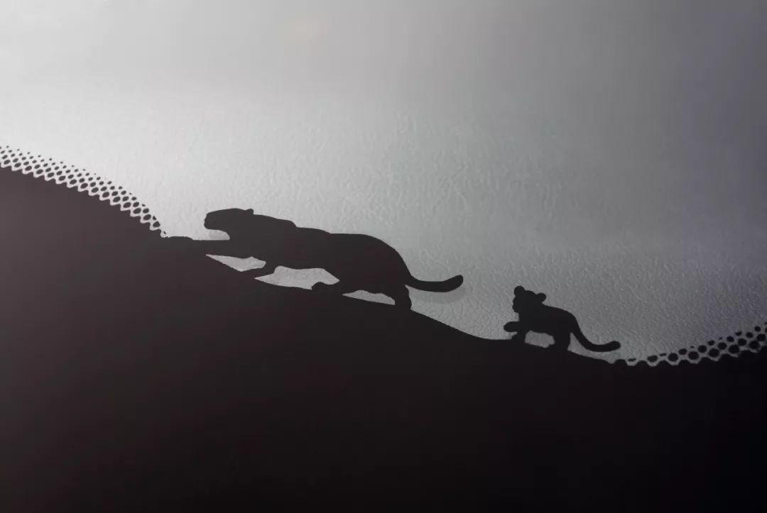 年輕的豹,誠意的心 全面解析全新捷豹E