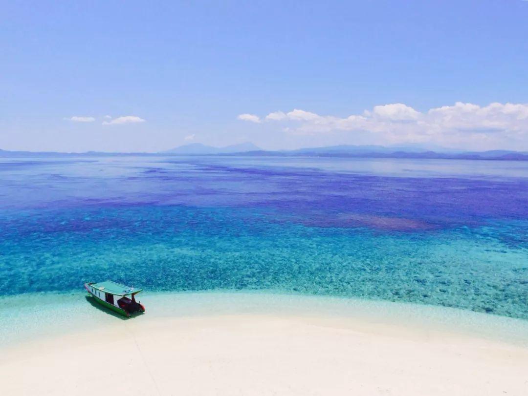 在又野又美的小岛荒野求生 你可以生存几天?