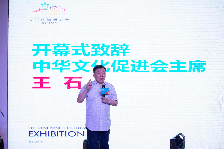 创见,创所未见,2018首届文化名镇博览会盛大开幕