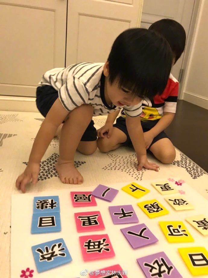 林志颖双胞胎儿子展露学霸潜质,网友:多亏陈若仪带得好!