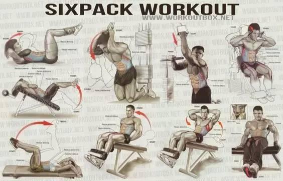 全身各部位肌肉训练动作图解,男女通用