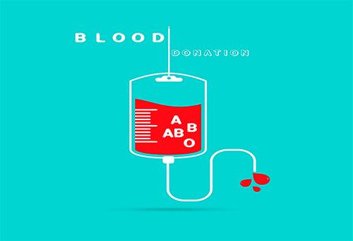 输血袋里的血是怎么回事