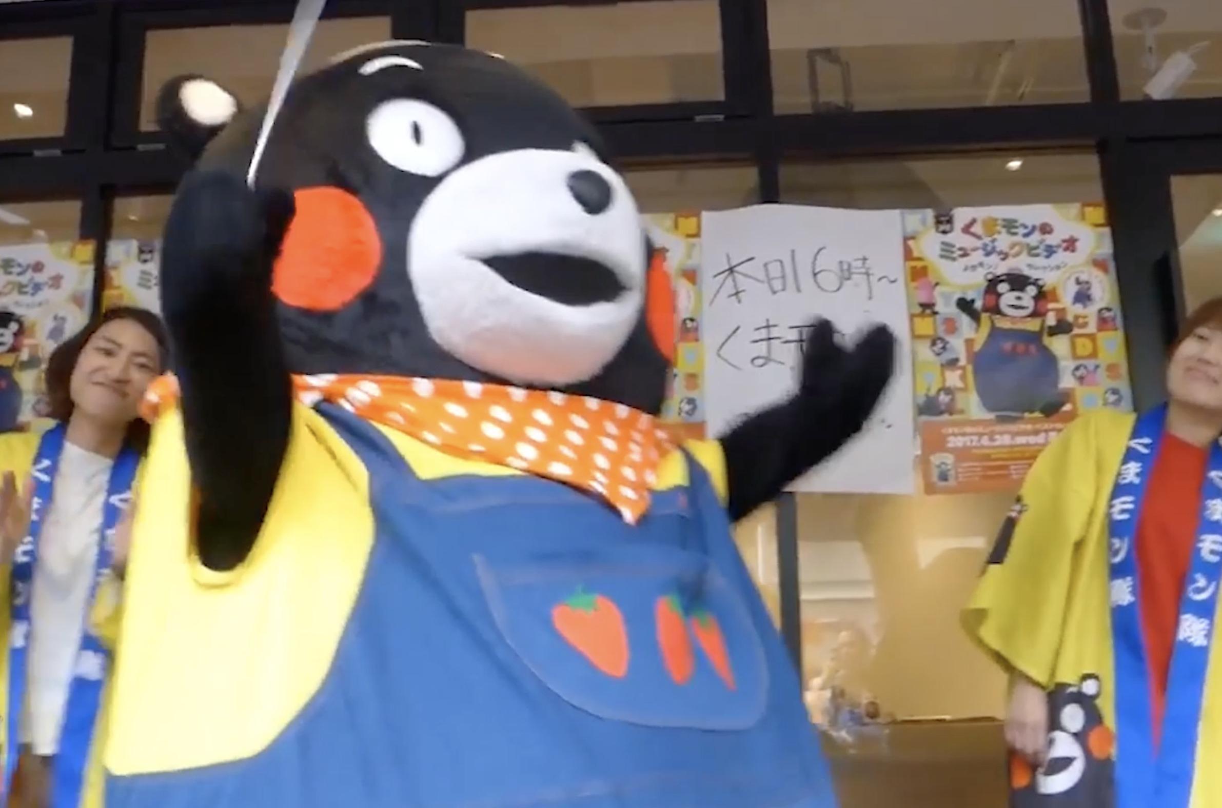日本熊本熊当起音乐指挥家,网友:熊认真起来我都会害怕
