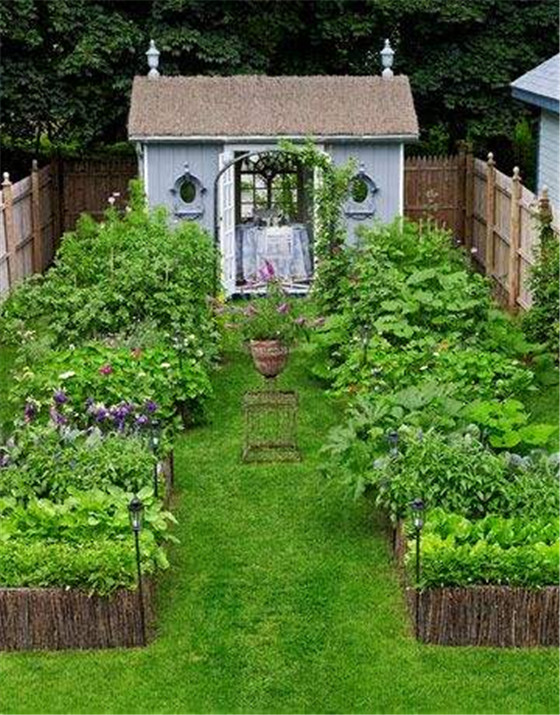 当庭院与菜园结合,美到直叫人想回归田园生活!图片