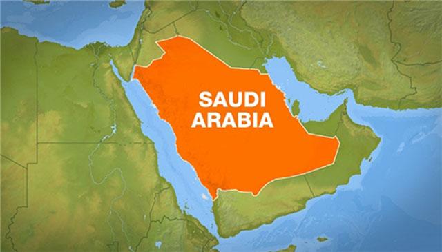 除了石油,沙特还有什么?,绿肥,绿能宝官网,绿色圃中小学教育资源网,万金刚,万界科技系统,万杰医学院