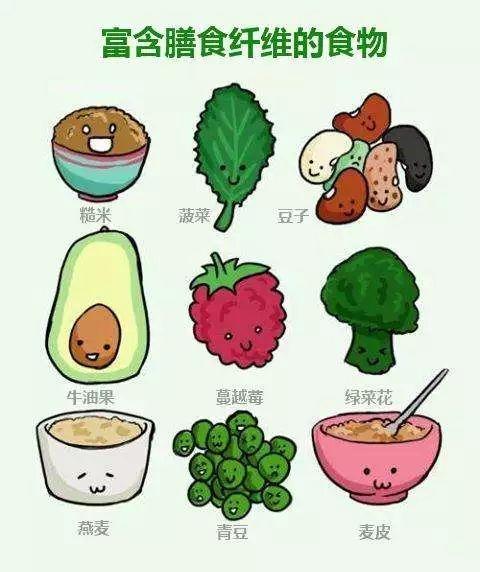 膳食纤维的作用和功能