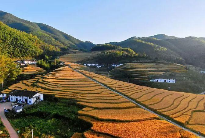 崇义县人口_第四届中国 崇义阳明山万人徒步大会将于11月21号举行