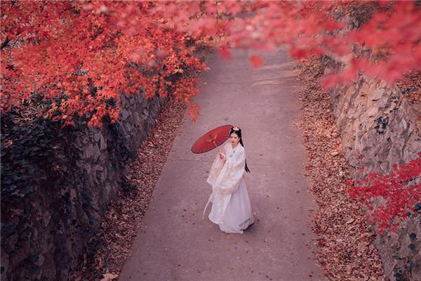 意境深远 枫叶银杏,最适合拍古风人像的季节图片