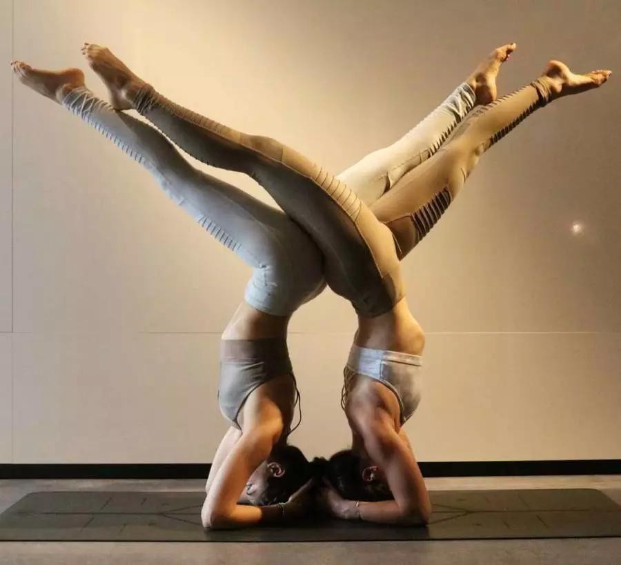 两人蹲立,并同样将双手撑在地面上完成倒立姿势,手肘触地,双腿分开