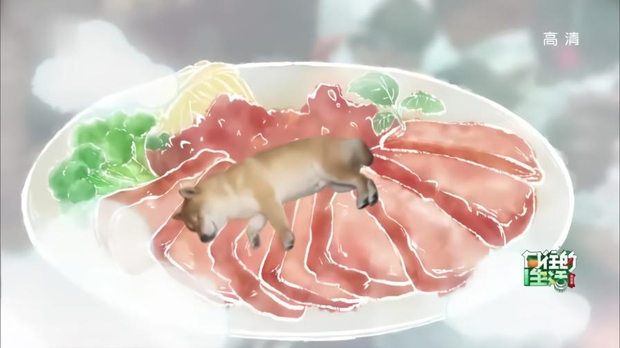 张钧甯想带羊跑步,陈伟霆一脸懵:这里的动物都怀孕了?