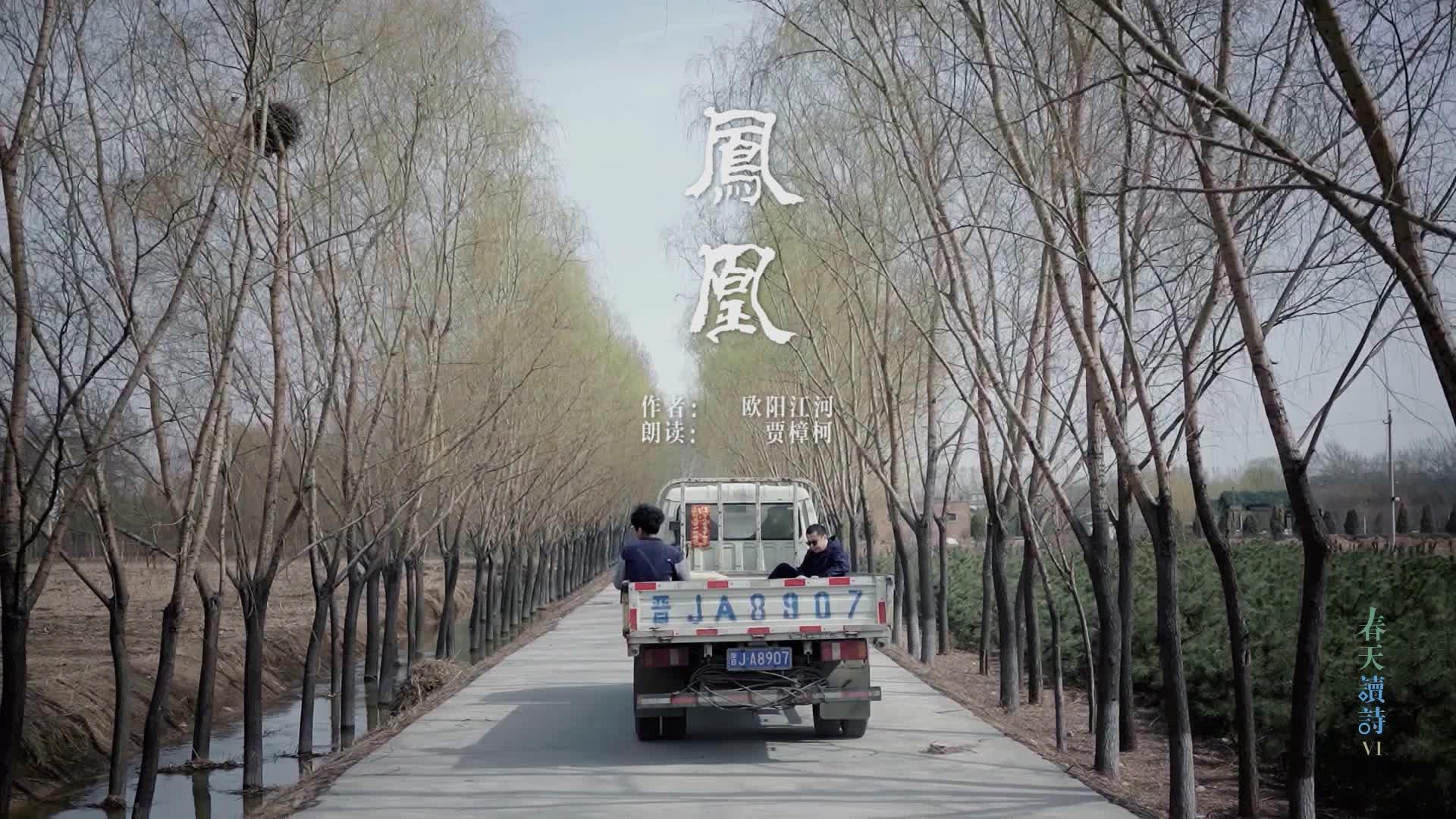 春天读诗6-贾樟柯:整个天空都是泪水