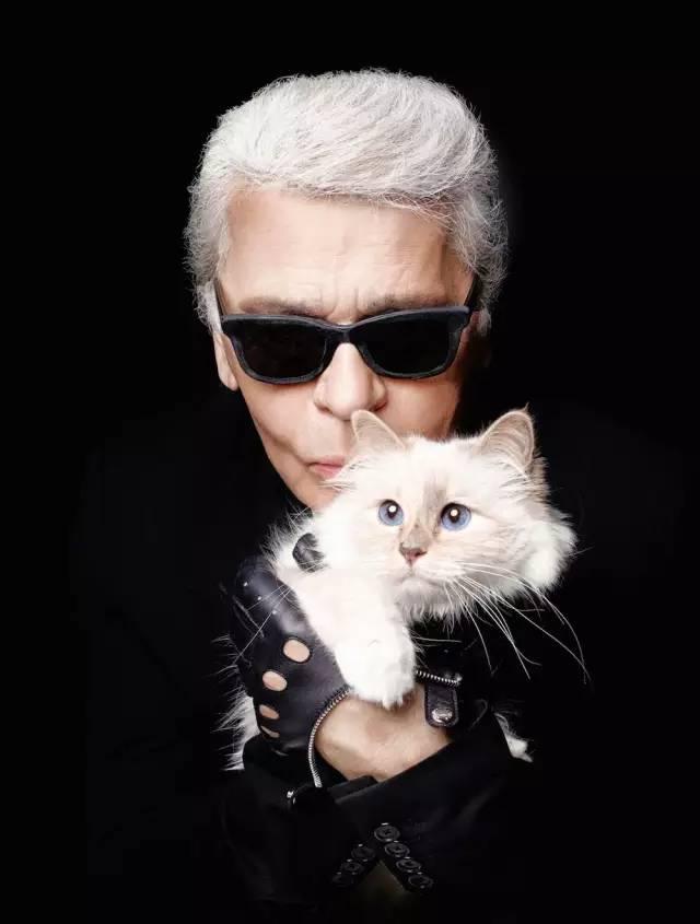 爱猫如命的老佛爷去世后也要和他的宠物在一起?
