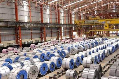 减税降费力度大!政府工作报告在河北企业中引发反响