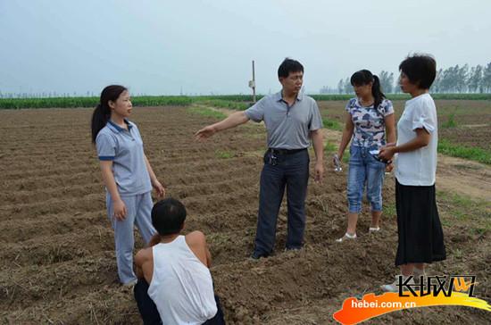 邢台:任县两万余亩受灾农田得恢复