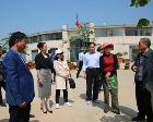 中国花卉协会副秘书长杨淑艳考察南阳玉兰花木产业
