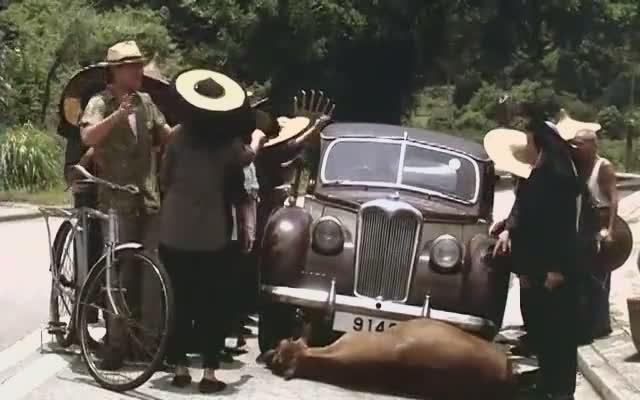富家女开车撞死一头牛,村民要人不要钱-凤凰视频-最具媒体品质的综合视频