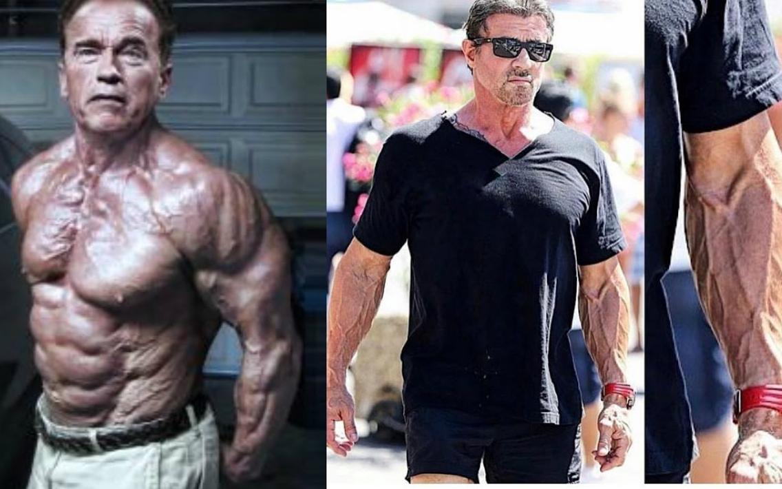 史泰龙和施瓦辛格_70岁施瓦辛格和71岁史泰龙日常健身视频-凤凰视频-最具媒体品质 ...