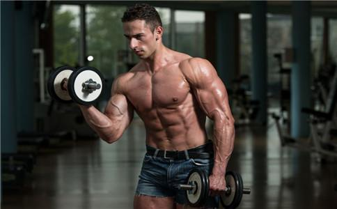 肱二头肌, 增肌, 力量训练