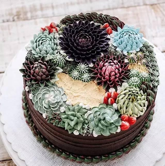多肉蛋糕——你一定没见过的美食艺术! - 梦儿 - 强健体魄 善待自我 好好活着