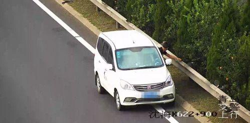 挡不住石榴诱惑 男子高速路竟违法停车摘果子